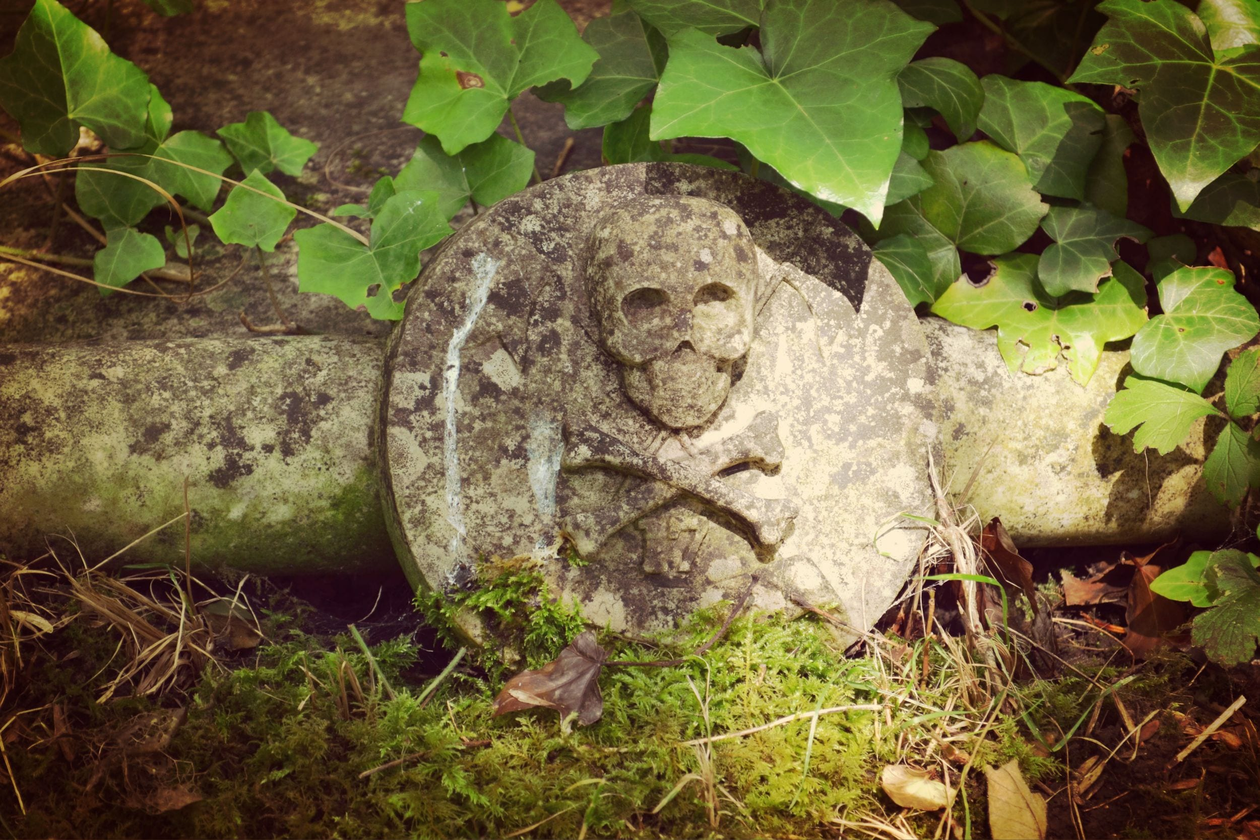 Highgate Cemetery Dead