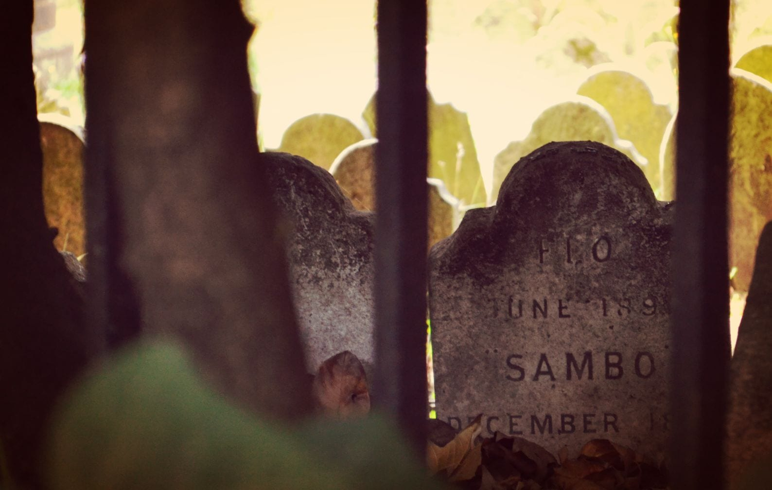 pet cemetery london