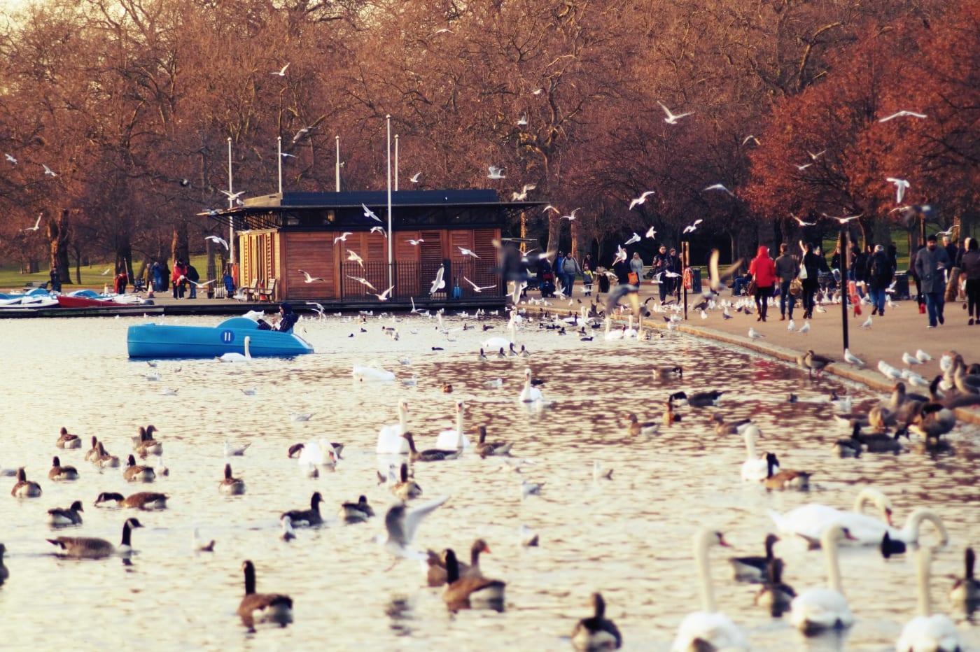 london-hyde-park-serpentine