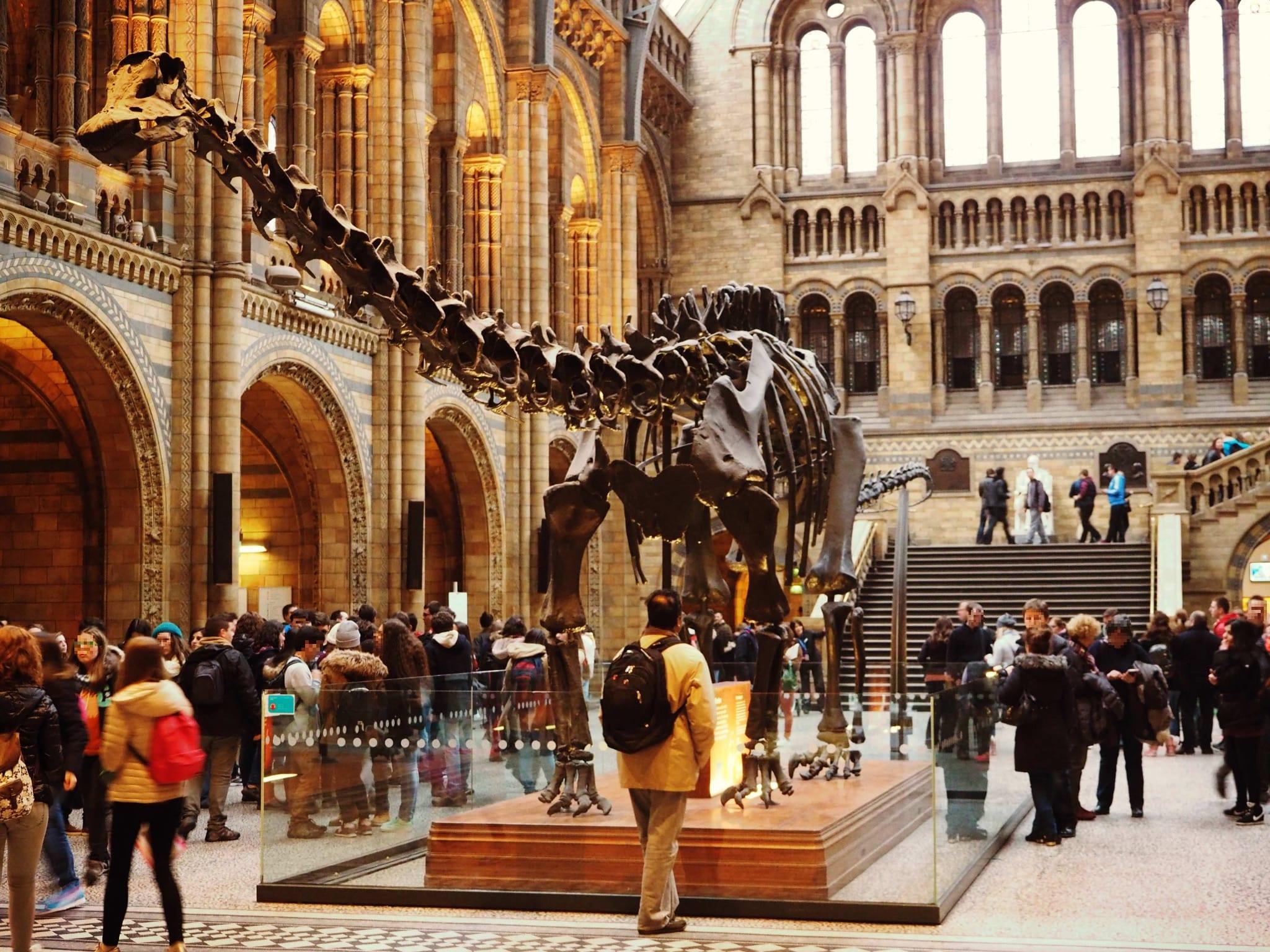 Ganz schön groß, die Dinosaurier.