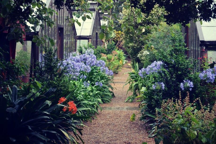 Chelsea Physic Garden Restaurant