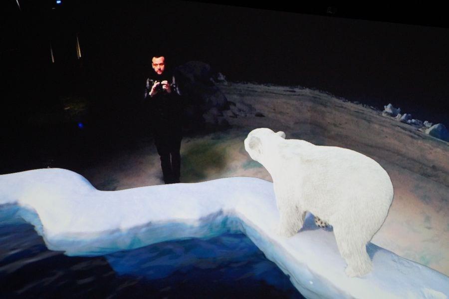 Eisbären treten mit Dir in Kontakt, wenn auch nur animiert!