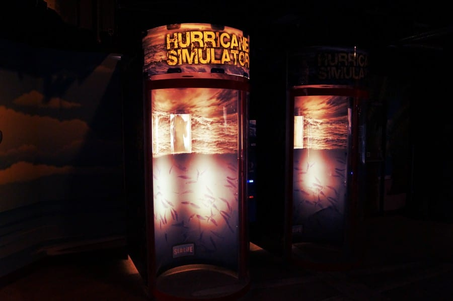 Der Hurricane Simulator
