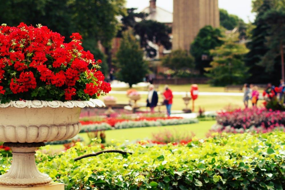kew-garden-london-blumen