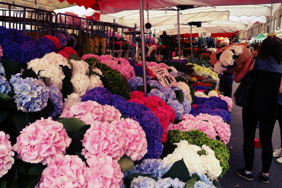 columbia-road-flower-market-blumen
