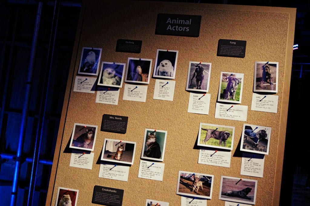 Auch die tierischen Schauspieler wurden bedacht. Interessant: mehr als 250 Tiere waren über die 10 Jahre des Drehs mit am Set!