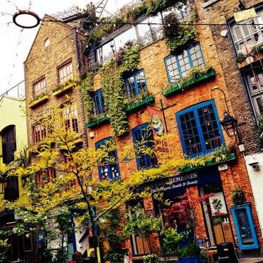 Neal's Yard – eine farbige Oase im Großstadtdschungel